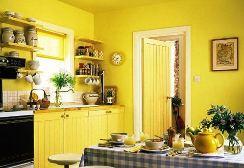минеральная водоэмульсионная краска в кухонном интерьере